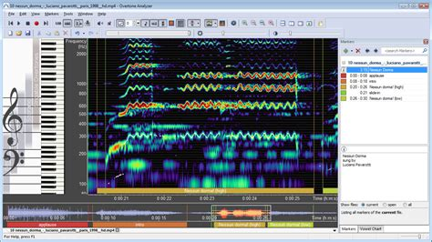 Sygyt Software – Software for Voice Analysis and Sound