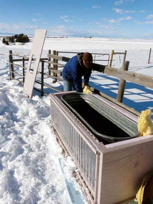 How To Keep Livestock Water From Freezing - Homesteading